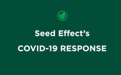 Seed Effect's COVID -19 RESPONSE
